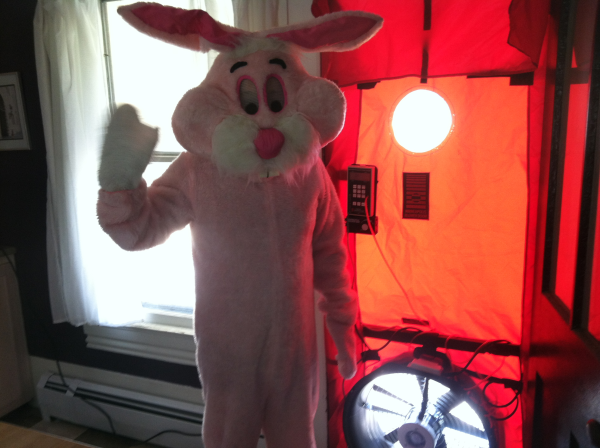 Blower door with the Easter Bunny
