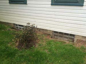 Uncovered window wells with landscaping sloping towards the house - this is a recipe for a wet basement.